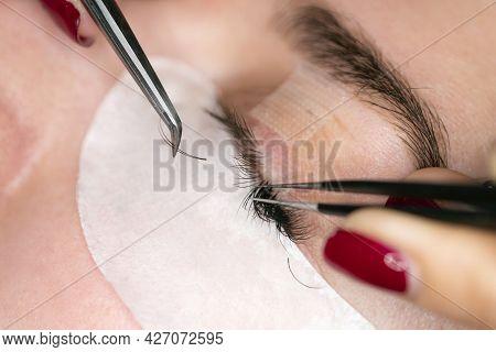 Woman Eye With Long Eyelashes. Eyelash Extension. Lashes, Close Up. The Process Of Gluing Eyelashes