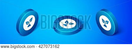 Isometric Plant Based Icon Isolated On Blue Background. Blue Circle Button. Vector