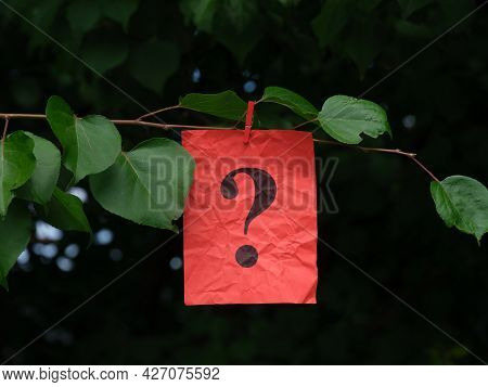 A Red Paper Note With A Question Mark On It Hanging Of A Tree Branch With A Clothespin. Close Up.