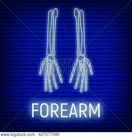 Concept Forearm Bone Icon Glow Neon Style, Skeleton Part Organism, Roentgen Human Body Image Isolate
