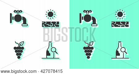 Set Bottle Of Wine, Tap For A Barrel, Bunch Grapes And Drought Icon. Vector