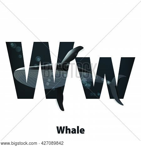 Cute Animals For Children To Learning Alphabet W Cartoon Characters Whale Isolated On White Backgrou