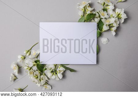 Composition Of Green Leaves And Flowers Of Jasmine  With A Blank Sheet For Text On A Gray   Paper Ba
