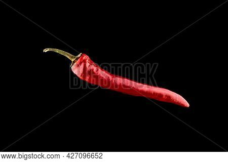 Red Jalapeno. Spicy Chile Cayenne Pepper Isolated. Red Hot Chili Paprika On Black Background. Fresh