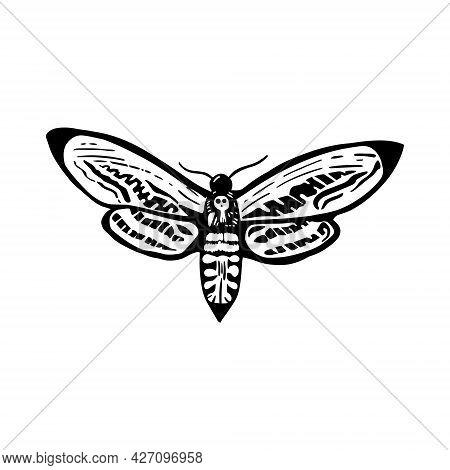 Deaths Head Moth In Ink On White. Halloween Design Elements.