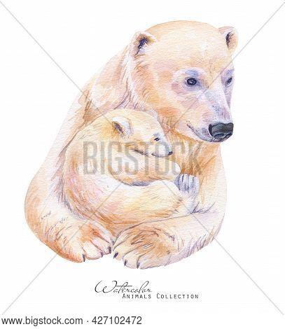 Polar Bear And Baby Portrait. White Bear Family Watercolor Illustration