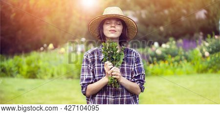 A Young Girl Gardener In A Straw Hat Holds A Bouquet Of Harvested Fresh Mint And Inhales Its Wonderf
