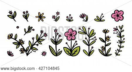 Flowers, Leaves And Branches Elements For Ornaments. Decorative Floral Elements For Various Designs.
