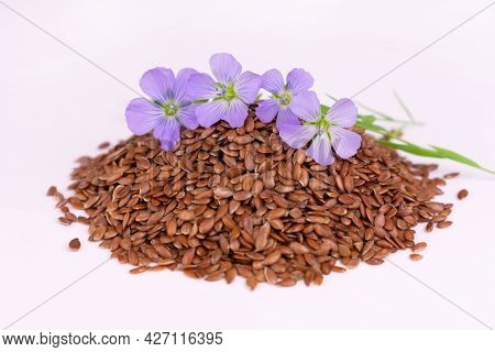Flax Seed And Flax Flowers Closeup On White Backgrounds.