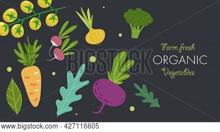 Creative Banner With Fresh Vegetables. Trendy Flat Doodle Template. Tomatoes, Onion, Beet, Carrot, B