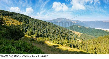 Idyllic Mountain Scenery In Morning Light. Evergreen Trees On The Steep Hills. Wonderful Summer Land