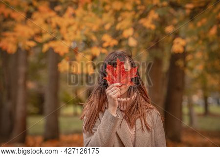 Portrait Of A Young Woman In Autumn In The Park, Covers Her Face With A Maple Leaf, Leaf Fall Season