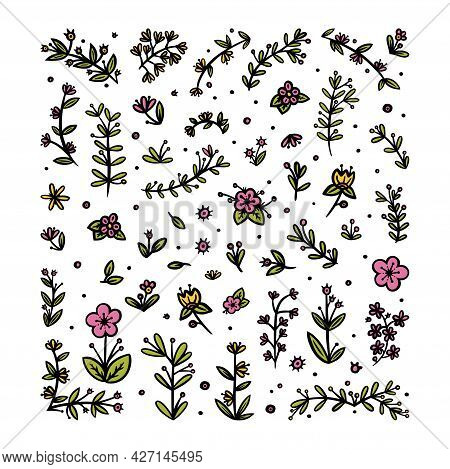 Flowers, Leaves And Branches Elements For Ornaments. Decorative Floral Pattern For Various Designs.