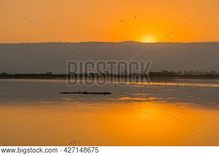 Sunrise View Over The Wetland, In The Hula Nature Reserve, Northern Israel