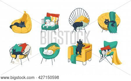 Pets In Chairs. Cartoon Funny Home Animals In Cozy Armchairs. Cats And Dogs Sleeping And Resting On