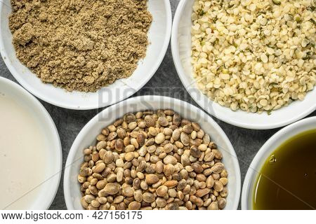 collection of hemp seed products: hearts, protein powder, milk and oil in small white bowls, superfood concept