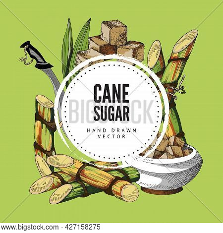 Hand Drawn Background With Round Label, Place For Brand And Cane Sugar, Cane And Machete. Vector Ske