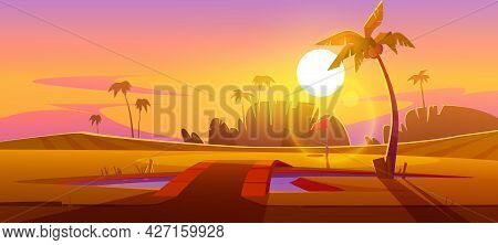 Golf Course With Pond With Bridge And Palm Trees At Sunset. Vector Cartoon Tropical Landscape Of Spo