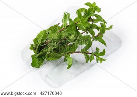 Fresh Spearmint Stems In An Open Transparent Plastic Container On A White Background