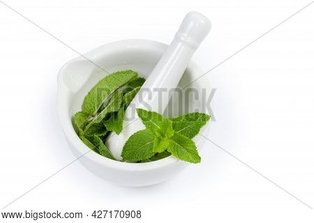 Fresh Spearmint Leaves In The Porcelain Kitchen Mortar With Pestle On A White Background