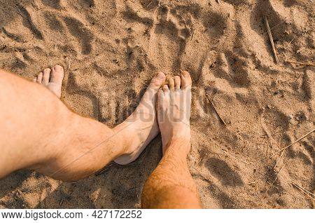 Homosexual Relationship Concept. Male Hairy Foot Touching Other Male Foot On The Beach, Top View. Hi