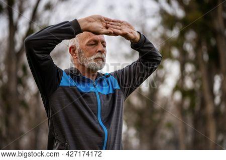 Senior Man Is Practicing Tai Chi Exercise In Park.