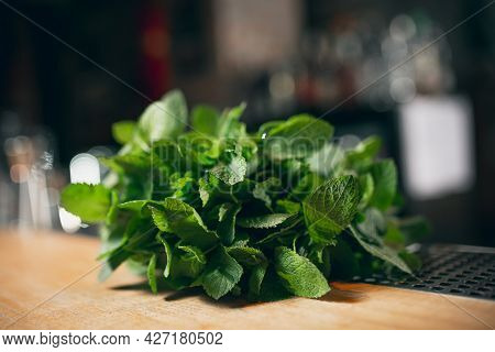 Bunch Of Green Fresh Mint Lies On Wooden Tabletop Of Bar Counter