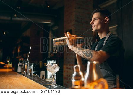 Shaking, Mixing. One Professional Bartender Shaking An Alcohol Drink In Cocktail Shaker Enjoying His