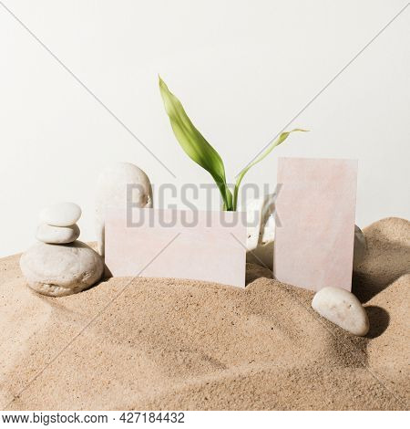 Aesthetic business cards tucked in the sand with design space
