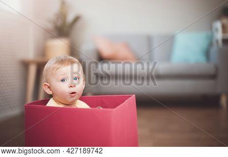 Cute Boy Sitting In The Red Box