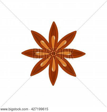 Dry Star Anise Condiment Vector Cartoon Style Icon, Illustration.