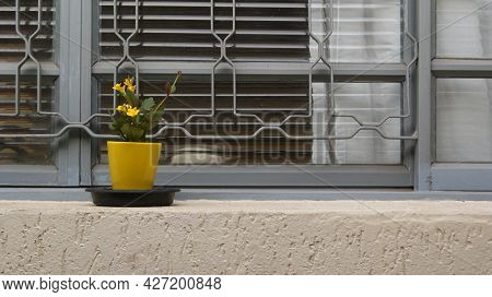 Window. Closed Window With Yellow Flower Pot And Yellow Flower Showing Window With Bars In Brazil, S