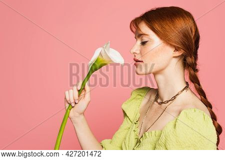 Side View Of Woman With Freckles Holding Calla Lily Isolated On Pink
