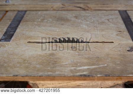 Serrated Circular Saw Machine. Furniture Manufacturing, Wood Sawing.