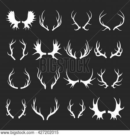 Vector Deer Antlers Isolated. Elk Moose Reindeer Head Horns Sketch Illustration, Hunting Trophy Silh