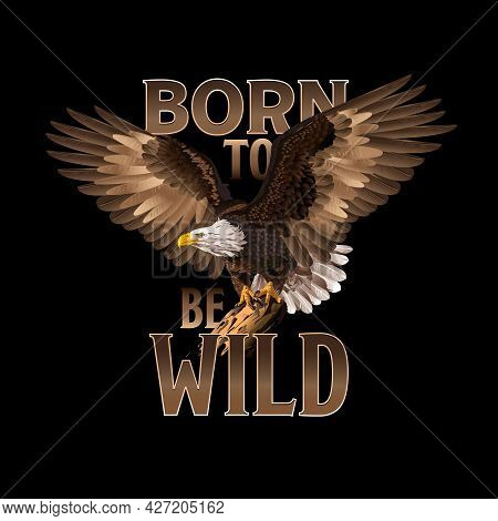 Eagle Vector Illustration, Can Be Used For Mascot, Logo, Tattoo, Clothing And More. Born To Be Wild.