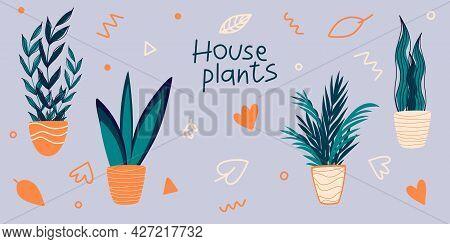Vector Set Of Indoor Houseplants In Pots In Scandinavian Style. Modern Concept Interior Design Eleme