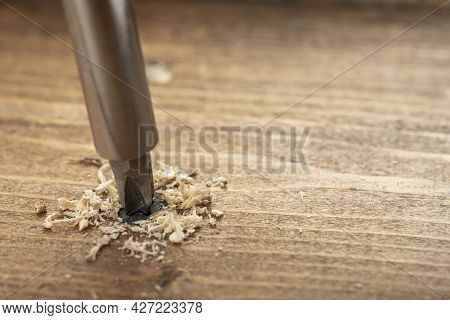 Self-tapping Screw Screwed Into A Wooden Board Close-up. Screw For Wood