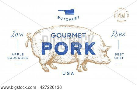 Pork, Pig. Template Label. Vintage Retro Print, Tag, Label With Pig Drawing, Engraved Old School Sty