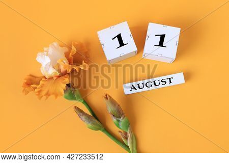 Calendar For August 11 : The Name Of The Month Of August In English, Cubes With The Number 11, Yello