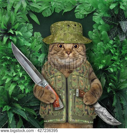 A Beige Cat Hunter Holds Hunting Knives In A Wood.