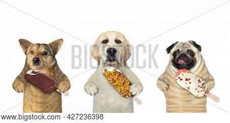 Three Dogs Are Eating Ice Cream. White Background. Isolated.