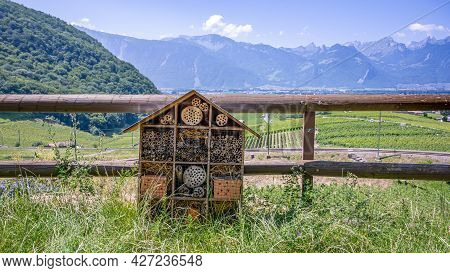 Wooden Insect House In The Garden. Bug Hotel In Natural Environment. Insect Hotel In Switzerland. Tr
