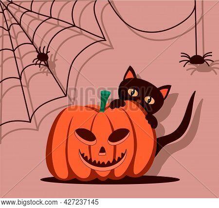 Halloween Pumpkin. A Black Cat Is Hiding Behind A Pumpkin. Spiders On The Walls With A Dark Shadow.