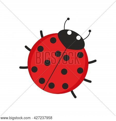 Illustration Of A Ladybug Red To Black Dot With Head And Antennae
