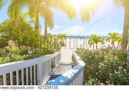 Boardwalk To The Beach With Beautiful Trees And Flowers With Sunflare