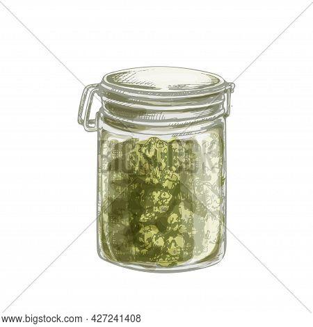 Glass Close Jar With Marijuana Buds. Hand Drawn Design Element. Vintage Vector Hatching Color Hand D