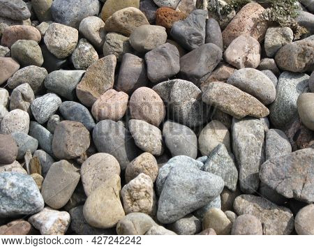 Sea Pebbles. Background Of Pebbles. Wet Stones. Multicolored Pebbles. Sea Shore.