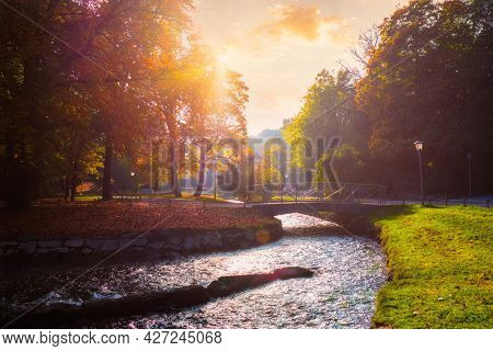 Golden autumn fall October in famous Munich relax place - Englishgarten. English garden with with river and fallen leaves and golden sunligh on sunsett. Munchen, Bavaria, Germany