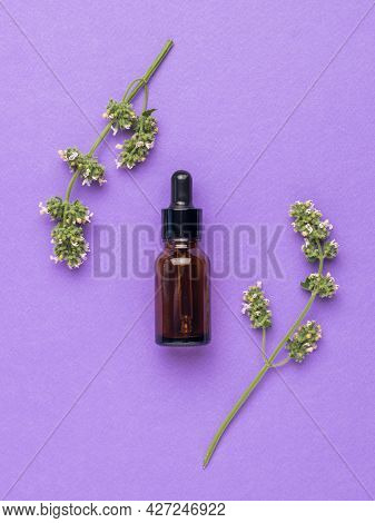 A Bottle Of Medicine And Medicinal Herbs On A Purple Background. The Concept Of Treatment And Body C